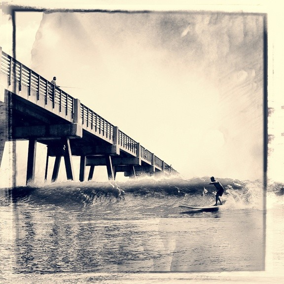 shark e's photo of Jacksonville Beach
