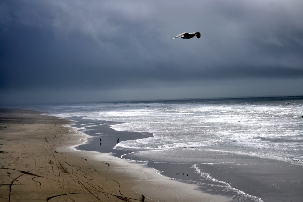 localSC's photo of Monterey Bay Offshore