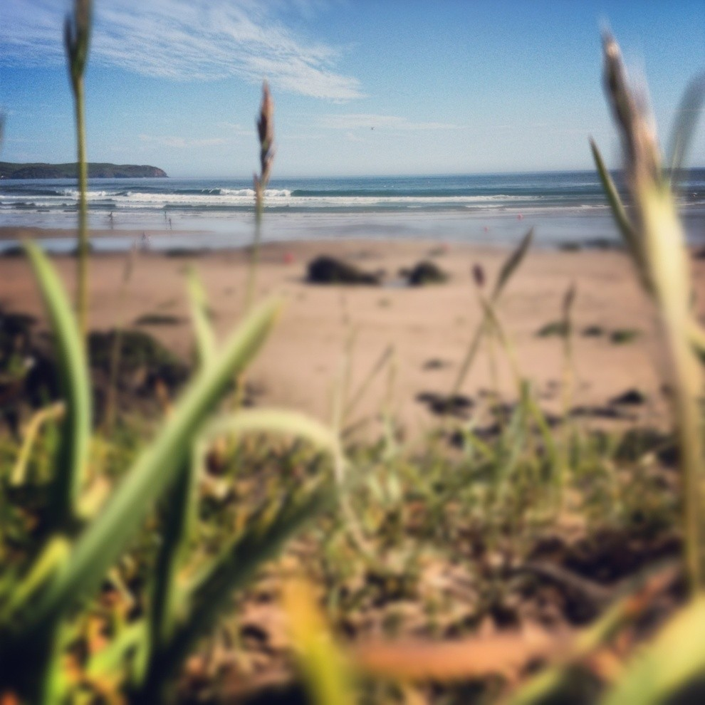 Will Paige's photo of Bantham