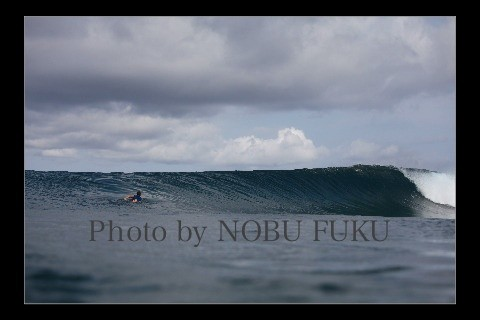 Nobu Fuku's photo of Pulau Babi