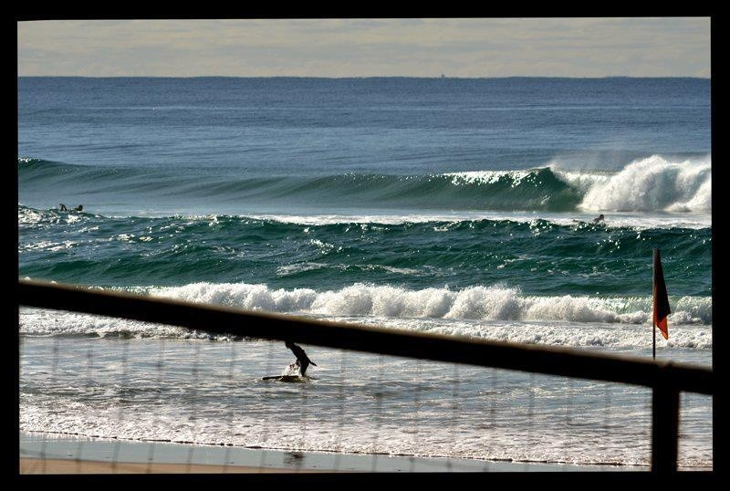 surferhc's photo of Surfers Paradise (Gold Coast)