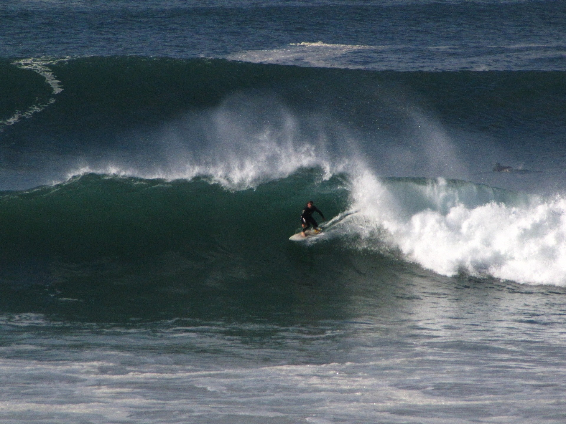 user261220's photo of Newquay - Fistral North
