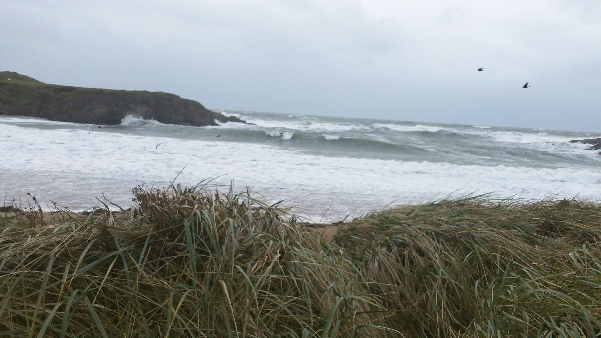 Clare Mayfield's photo of Anglesey (Ynys Môn)