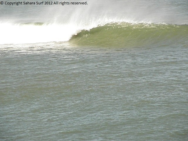 Sahara Surf's photo of Sidi-Rbat