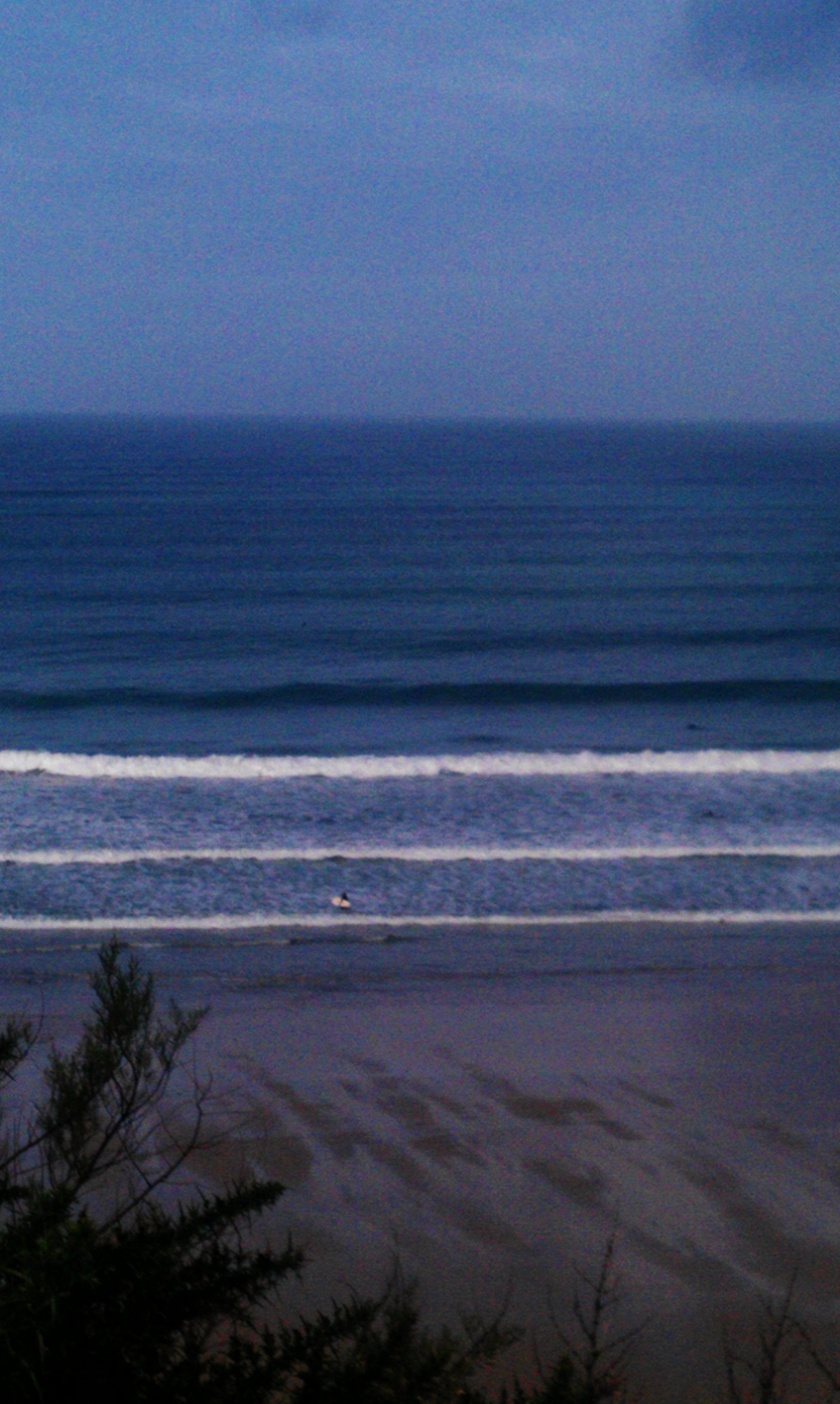 rory foster's photo of Newquay - Tolcarne Wedge