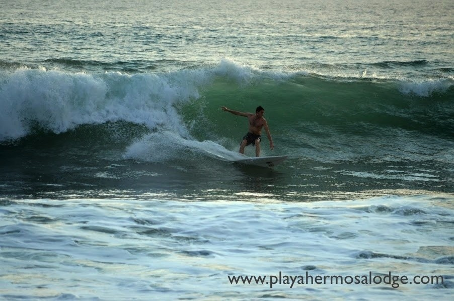 Playahermosalodge's photo of Playa Hermosa