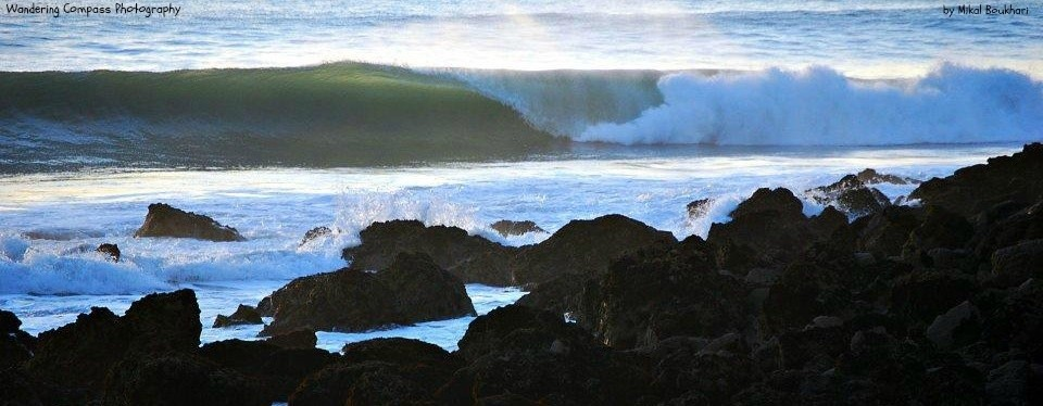 Mikal Waters's photo of Safi