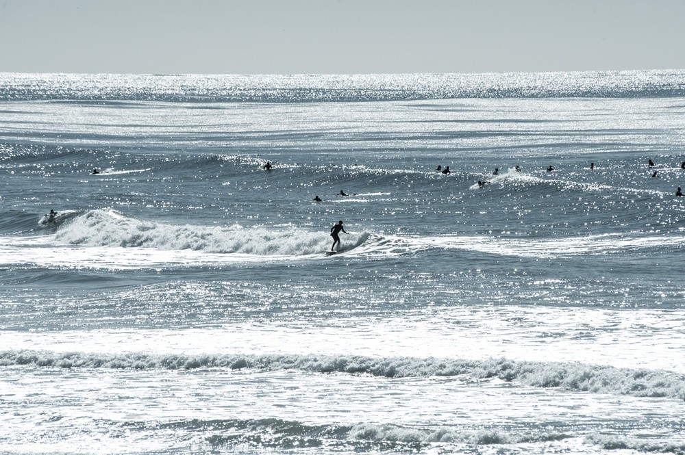 laurent_Imagery's photo of Swamis