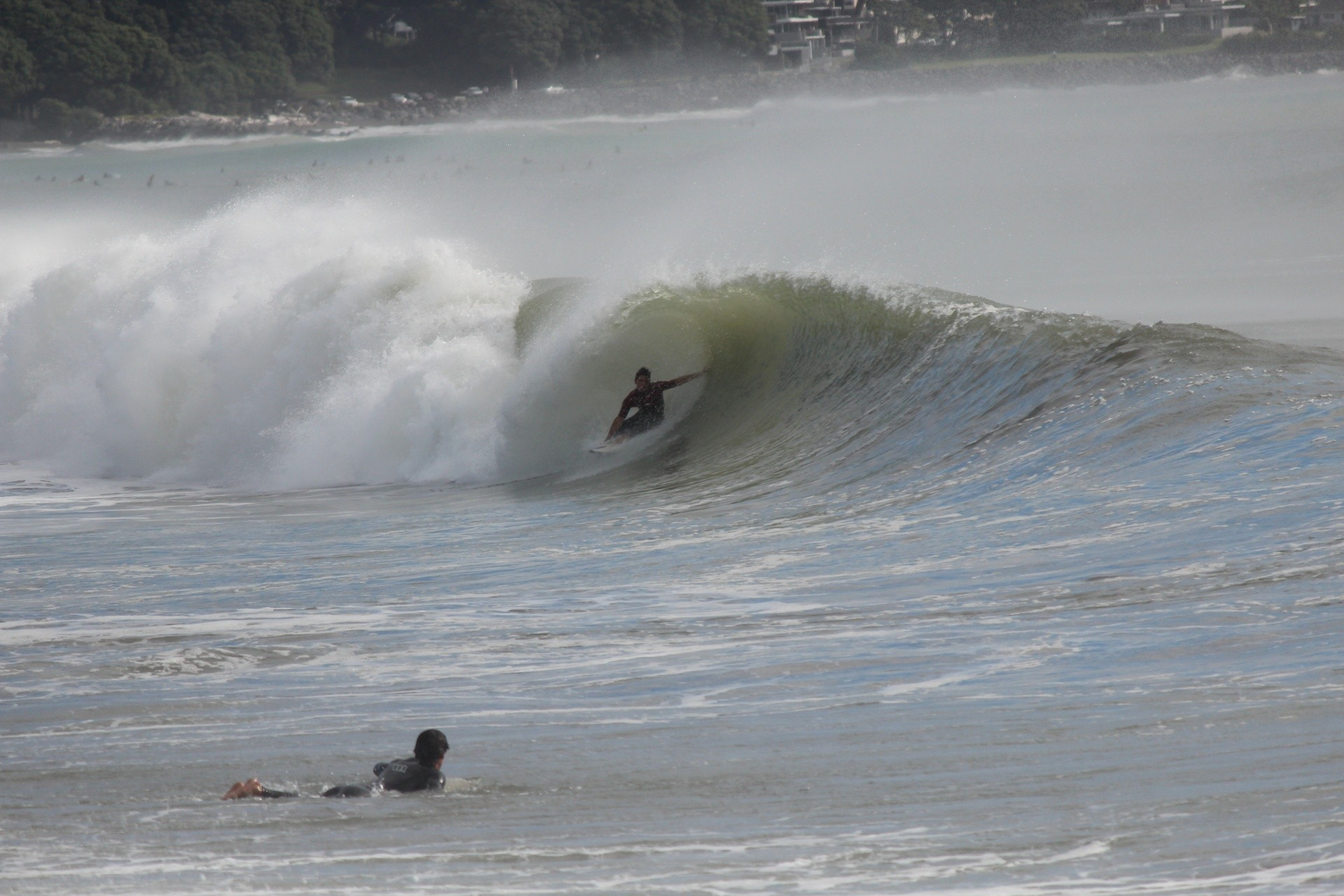 shanereid's photo of Waiwakaiho