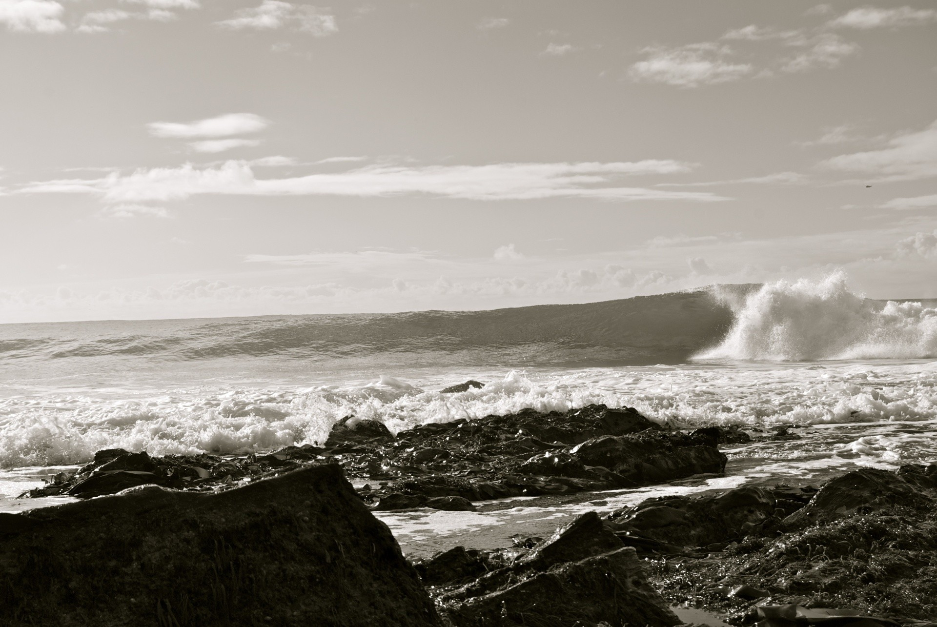 R.L.S 's photo of Porthleven