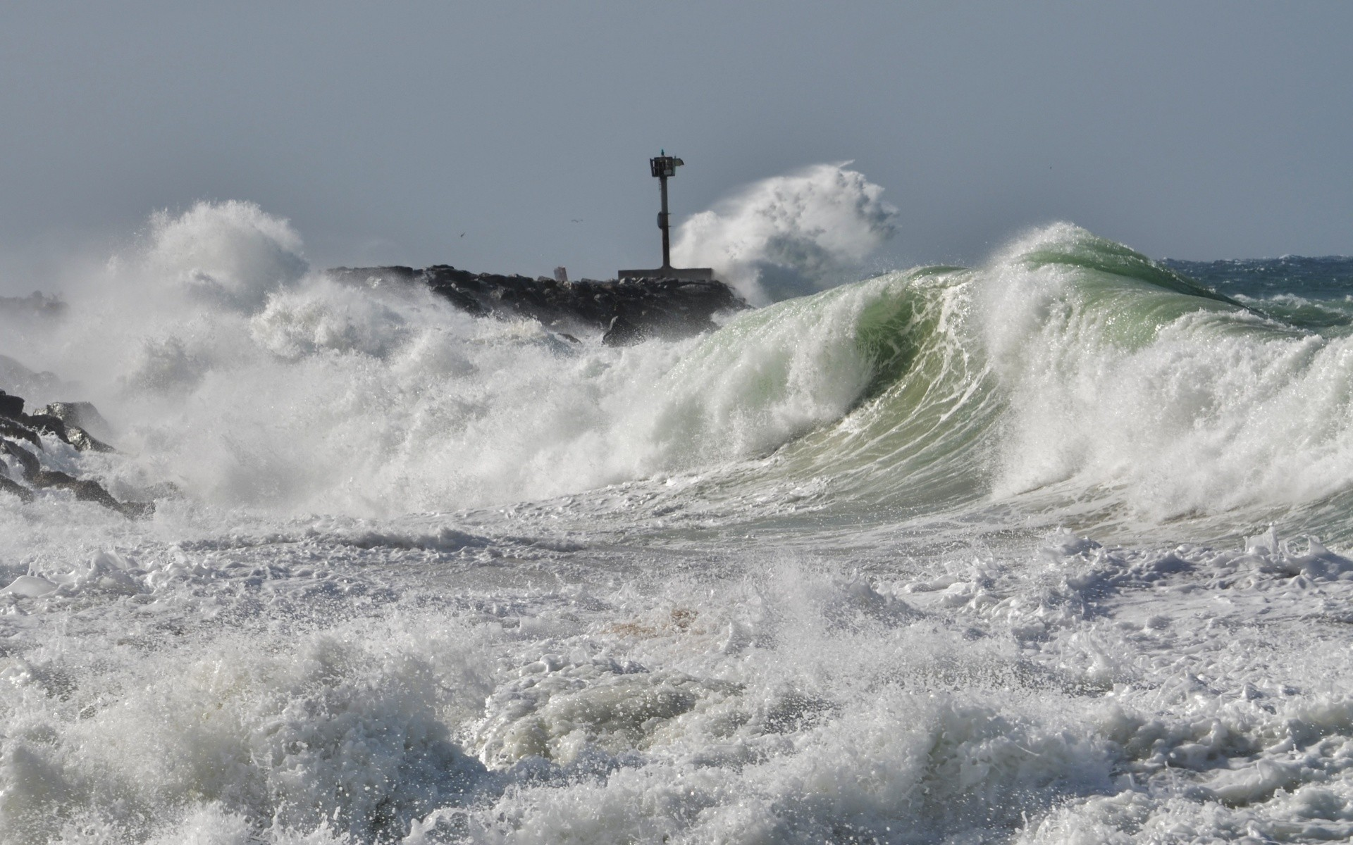Surfer's photo of The Wedge