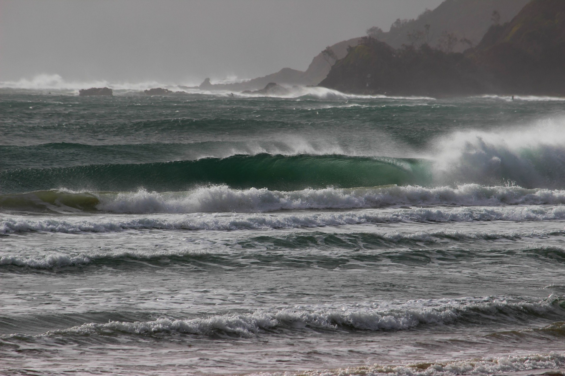 zinon's photo of Byron Bay