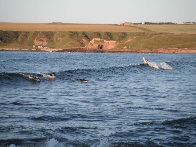 chris cowe (jebus)'s photo of Sandend (Moray Firth)