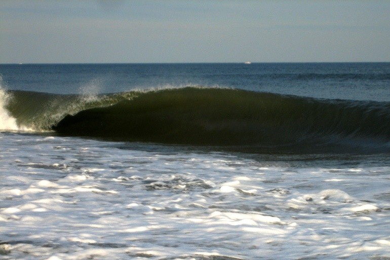 chuck's photo of Robert Moses State Park