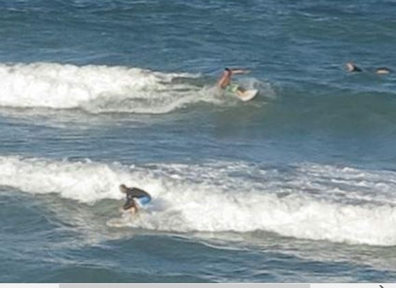 The Cagster's photo of Jensen Beach