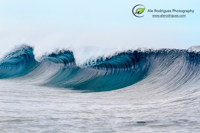 Ale Rodrigues Photography's photo of Teahupoo