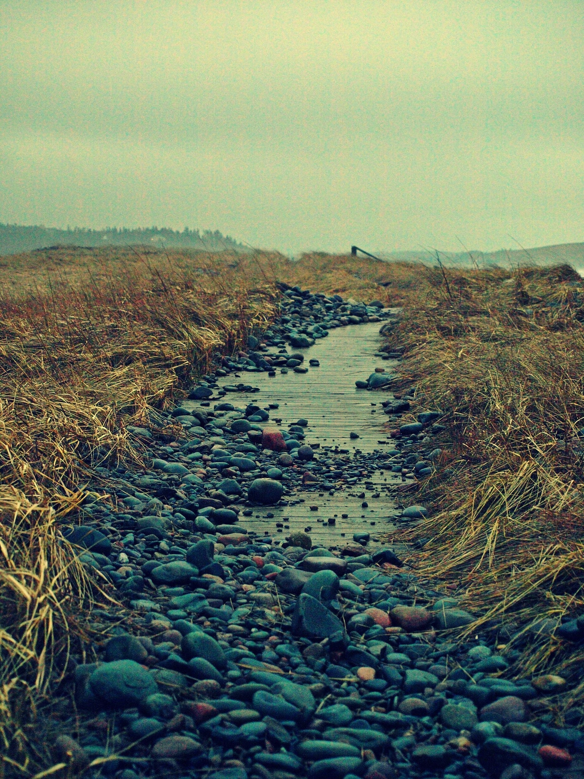 amattatall's photo of Lawrencetown