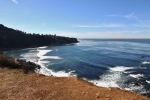 Photo of Palos Verdes Cove