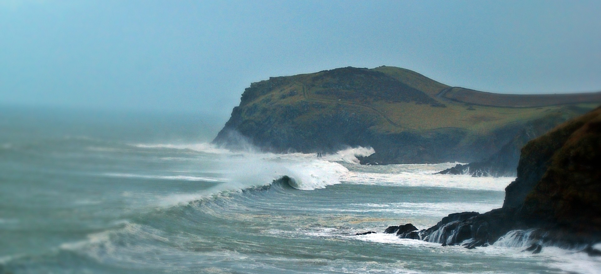 LPSurf's photo of Polzeath