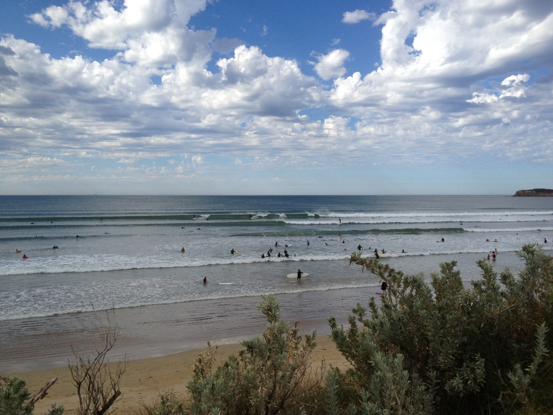 Tania van Megchelen's photo of Ocean Grove