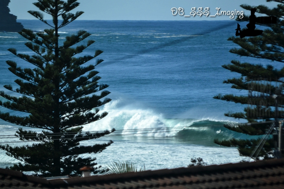 Dan Bielich's photo of Avoca Beach