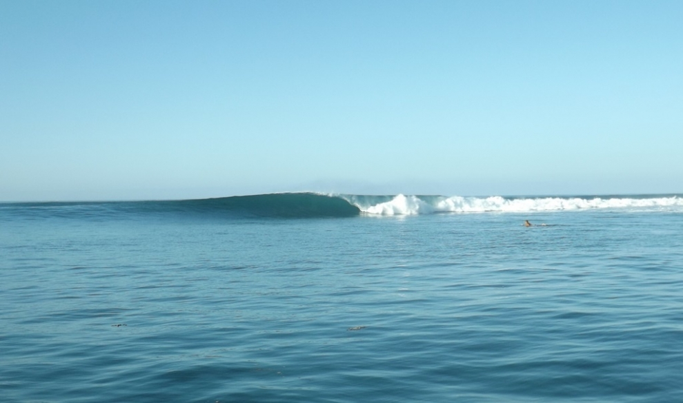 Mada Surf Tours's photo of Jelly Babies (Anakao)