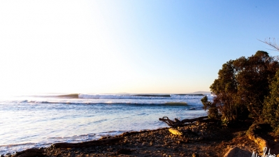 Photo of Little Rincon/Mussel Shoals