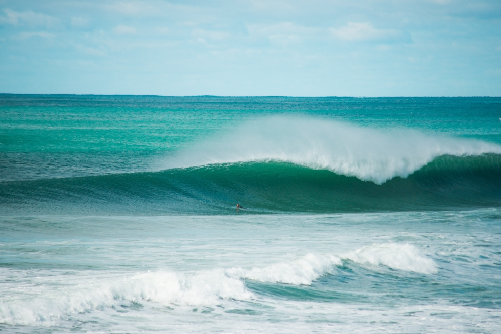 Campbell Morrison's photo of Kawana