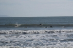 Photo of Bolinas