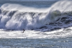 Photo of Steamer Lane