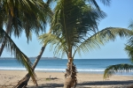 Photo of Playa Grande - Guanacaste