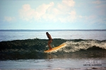 Photo of Tamarindo