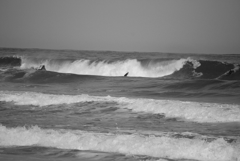 death threat dealer's photo of Surf City