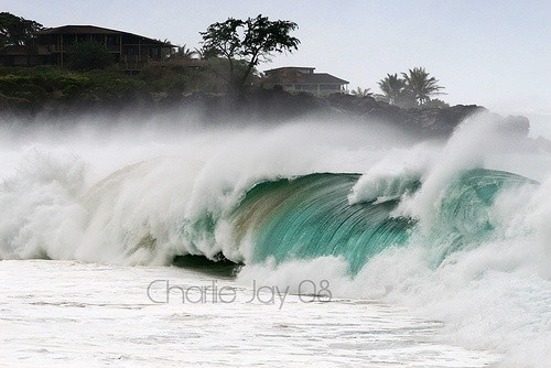 charliejay's photo of Waimea Bay